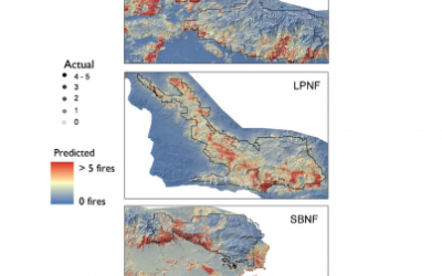 Comparing the role of fuel breaks across southern California national forests