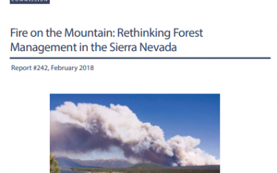 Fire on the Mountain: Rethinking Forest Management in the Sierra Nevada