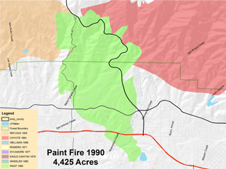 The Paint Fire 1990